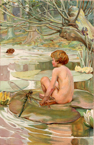The Water Babies. A Fairy Tale for a Land Baby. Arthur DIXON, Charles KINGSLEY.