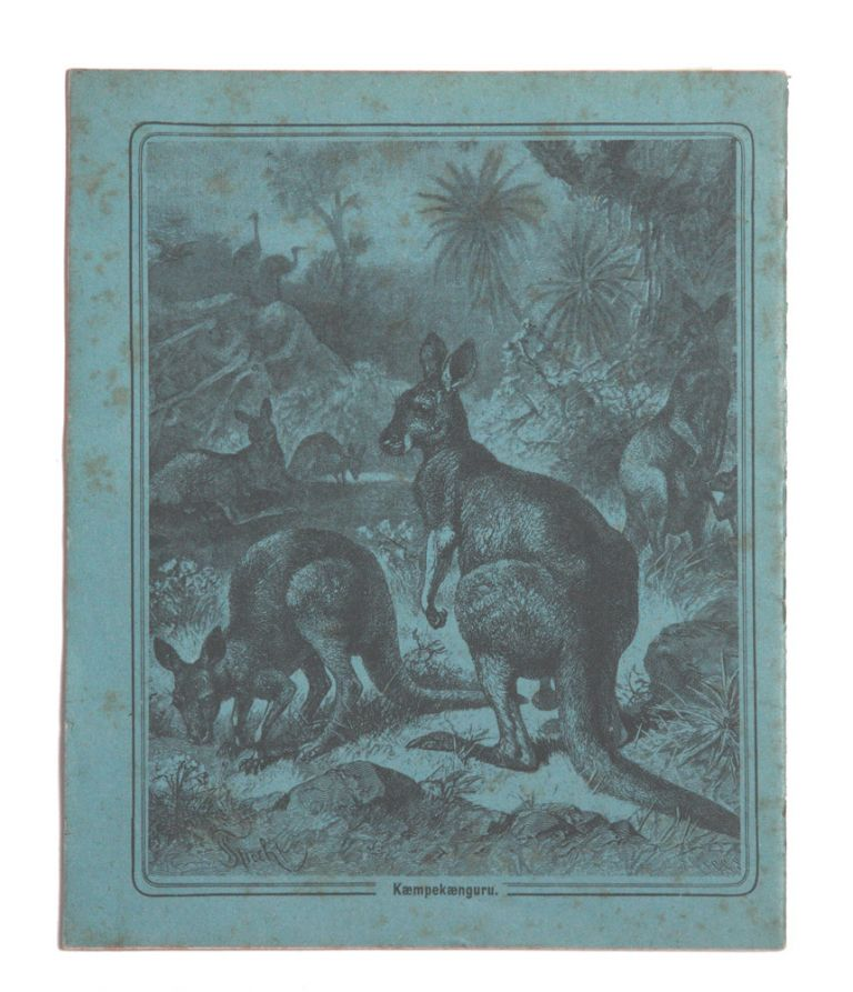 Child's exercise book with decorated Kangaroo covers. Friedrich SPECHT.
