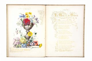 Gems for the Drawing Room - Fruit and Flowers - Books 1 and 2