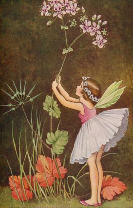 A Bunch of Wild Flowers. Ida Rentoul OUTHWAITE