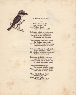 Feathered Favourites.; A Booklet of Bird Verses for the Children, with illustrations and brief descriptions.